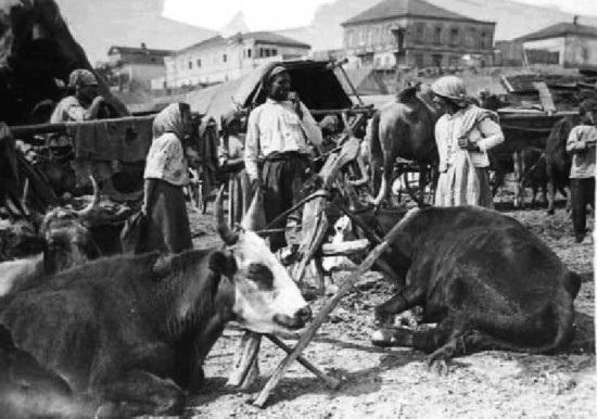 徐元宫:苏联农民的抗争及其命运–理论–人民网